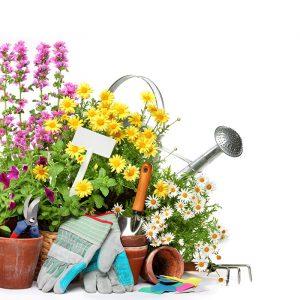 Garten Werkzeug und Blumen